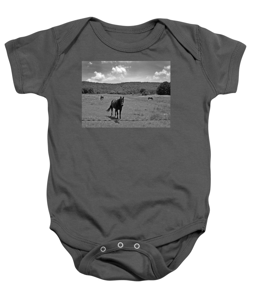 Horses Baby Onesie featuring the photograph Black And White Pasture With Three Horses by Anne Cameron Cutri