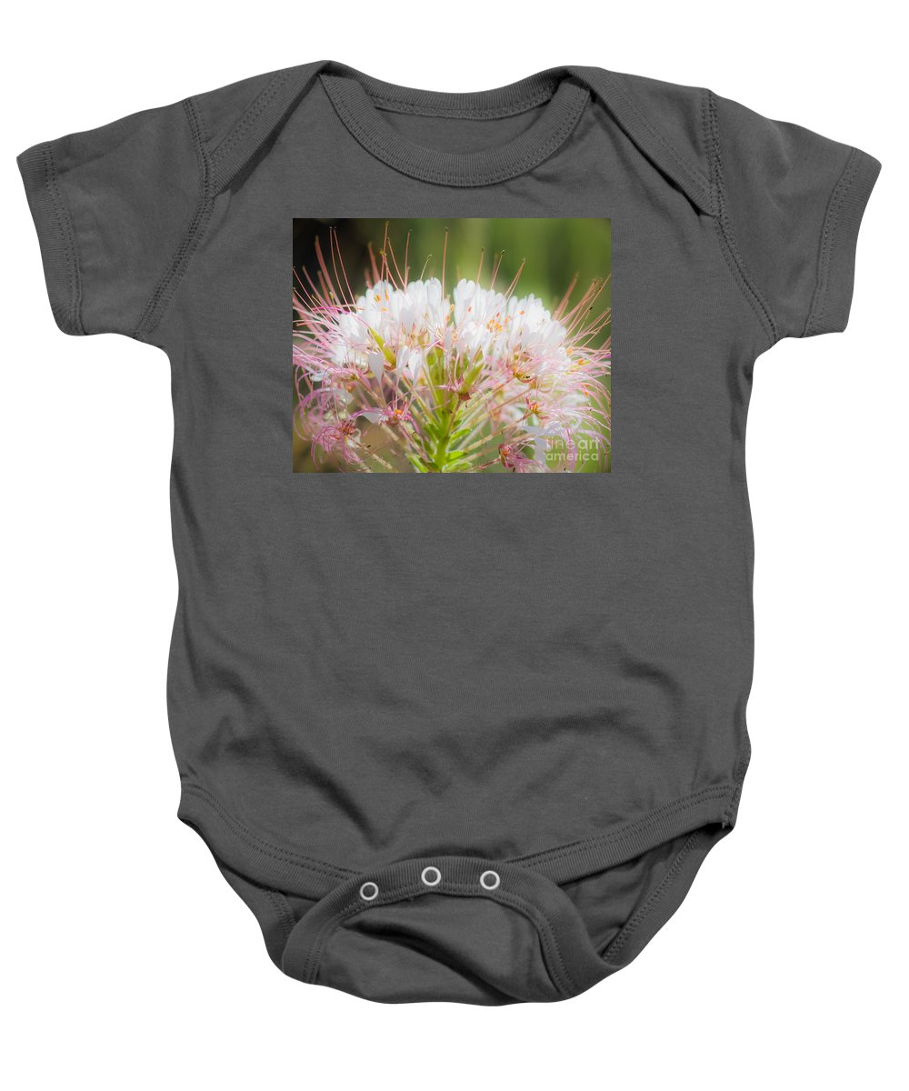 Palo Duro Canyon Baby Onesie featuring the photograph 08.03.14 Palo Duro Canyon - Comanche Trail 121e by Ashley M Conger