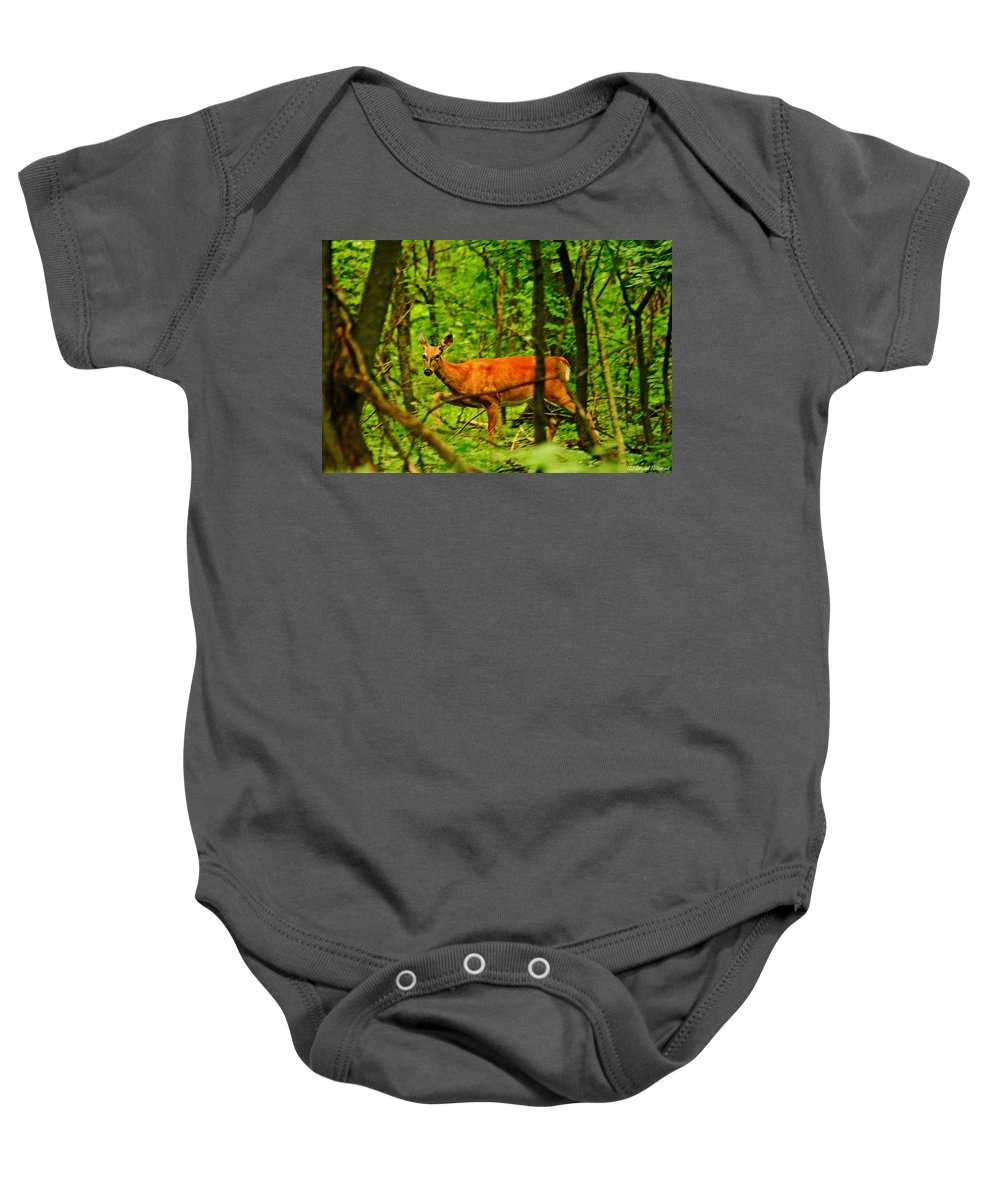 Doe Baby Onesie featuring the photograph Doe On The Move by Crystal Heitzman Renskers