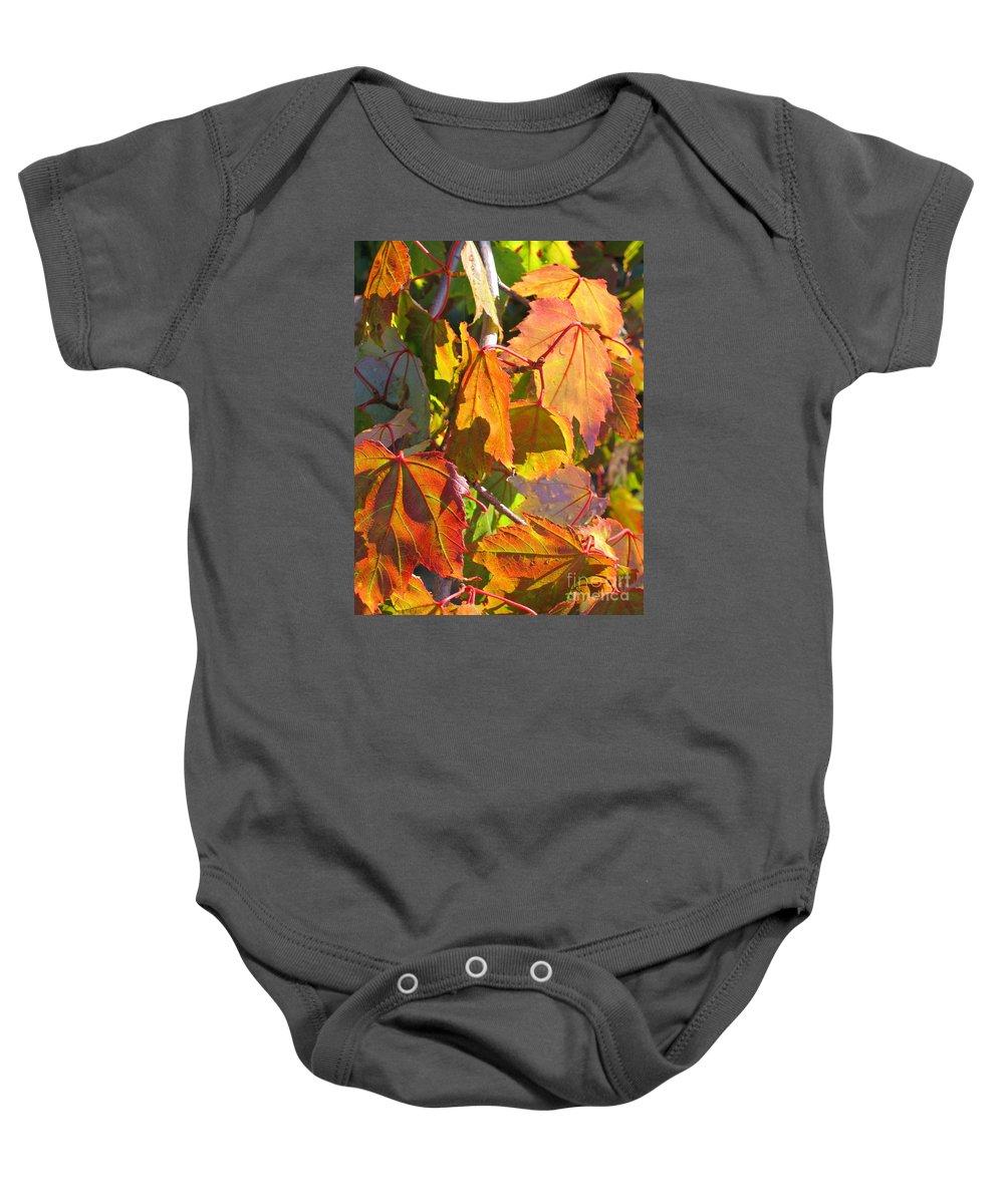 Autumn Baby Onesie featuring the photograph Illumining Autumn by Ann Horn