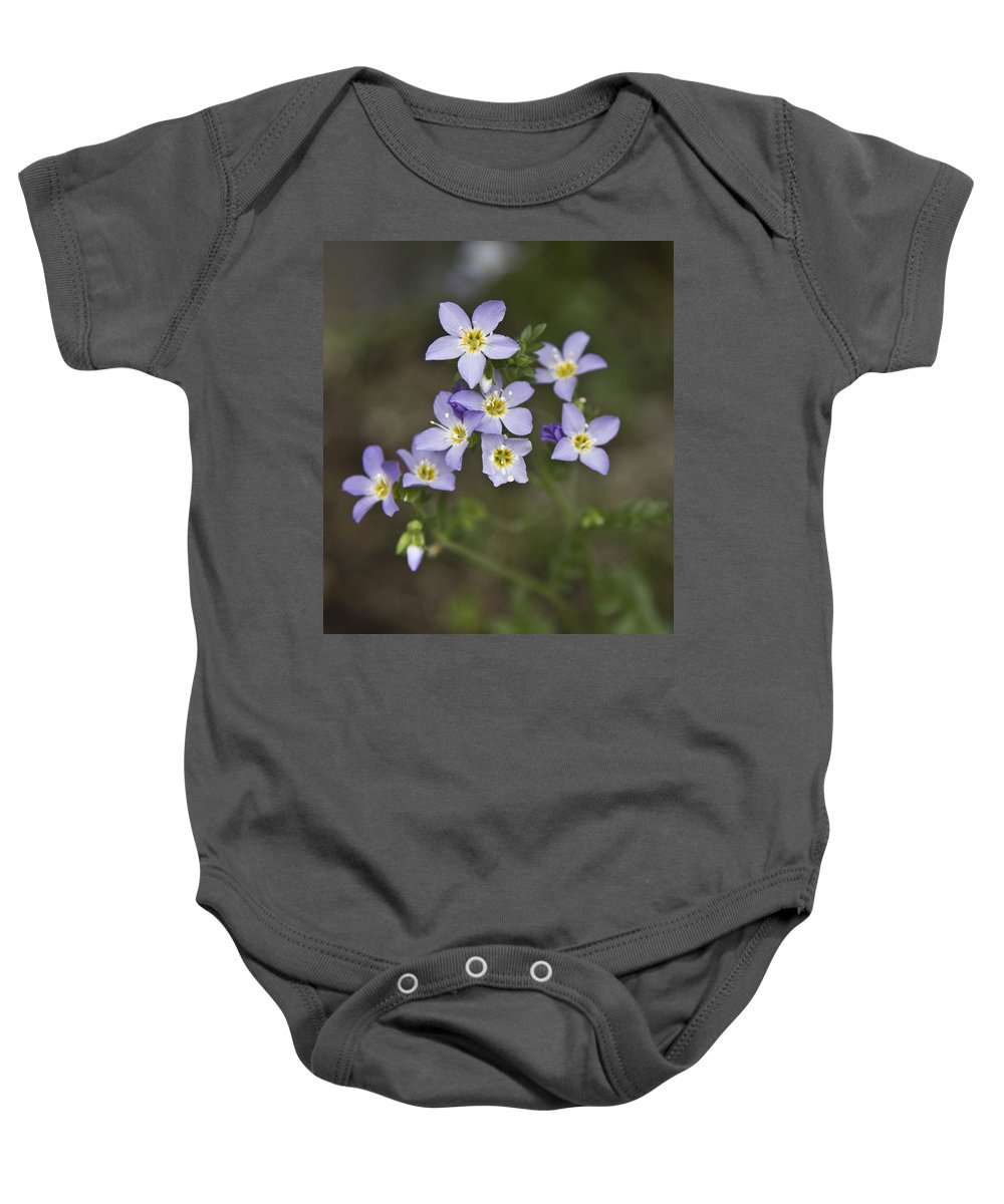 Forget-me-not Baby Onesie featuring the photograph Jacob's Ladder by Dee Carpenter