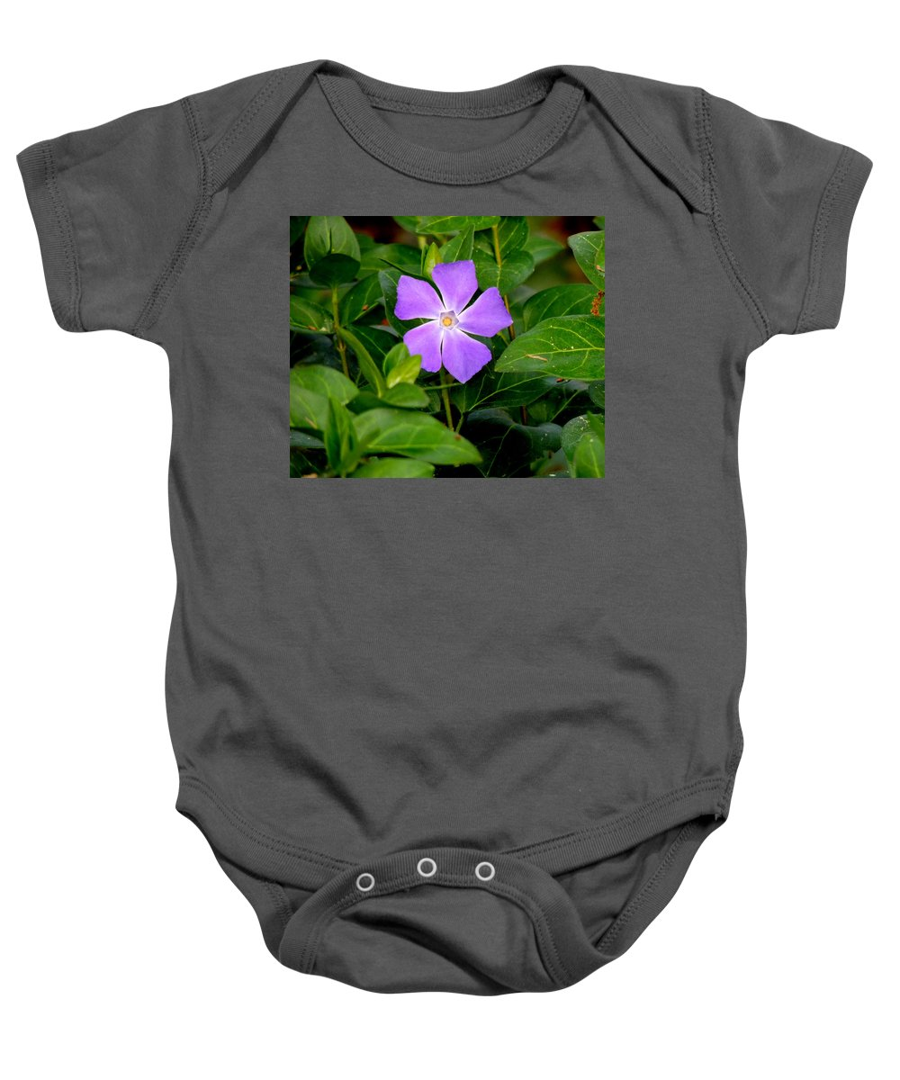 Digital Photography Baby Onesie featuring the photograph Pretty Purple Pinwheel by Kim Pate