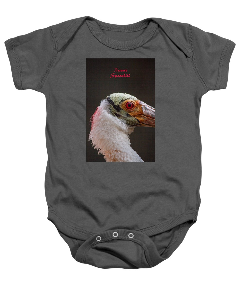 Roseate Baby Onesie featuring the photograph Roseate Spoonbill by Nick Gray
