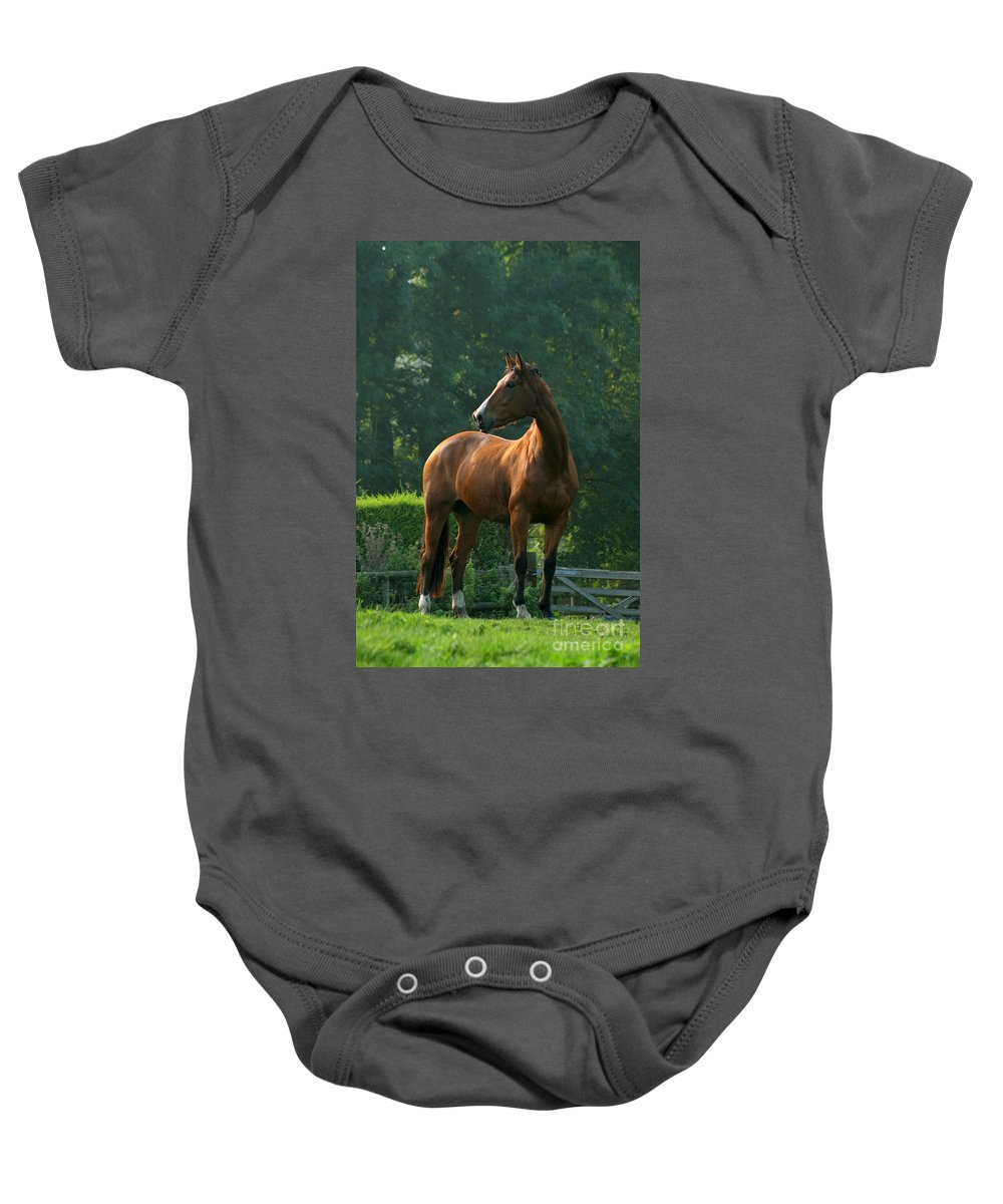 Horse Baby Onesie featuring the photograph Sentinel by Angel Ciesniarska
