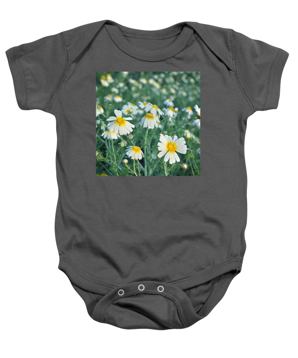 Landscape Baby Onesie featuring the photograph Spring Daisies by Guido Montanes Castillo