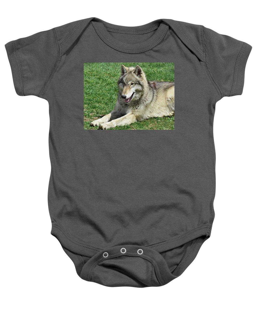 Wolf Baby Onesie featuring the photograph Sweetheart by Art Dingo