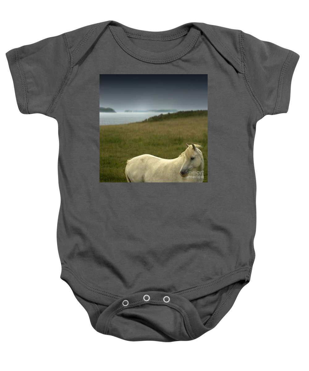 Welsh Pony Baby Onesie featuring the photograph The Welsh Pony by Angel Ciesniarska