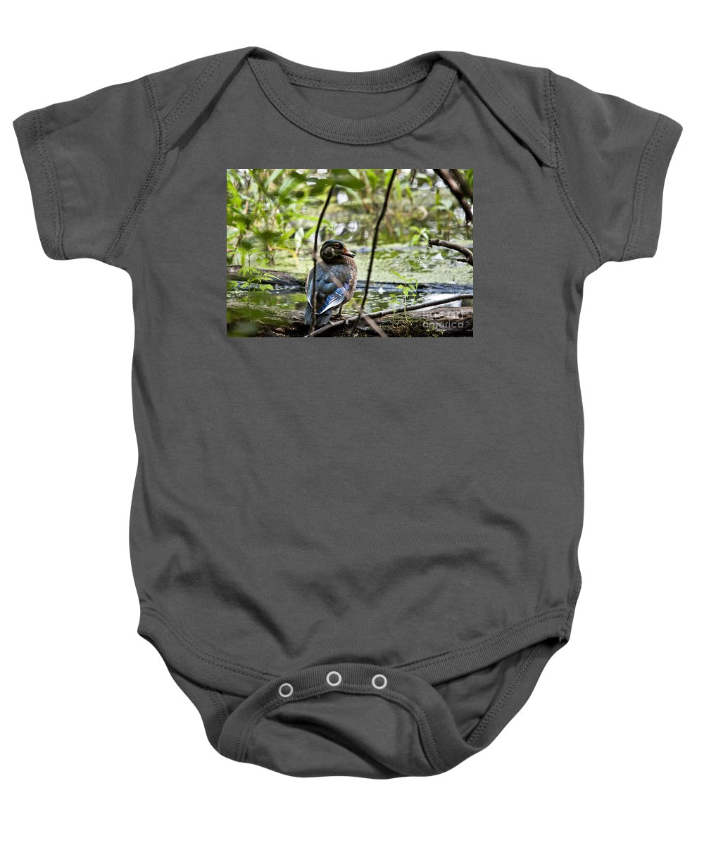 Baby Onesie featuring the photograph Young Wood Duck by Cheryl Baxter