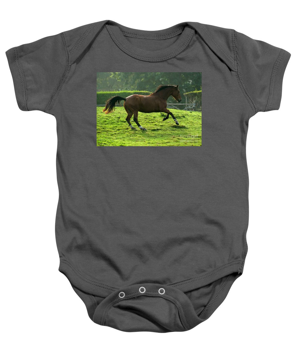 Grey Horse Baby Onesie featuring the photograph The Bay Horse by Angel Ciesniarska