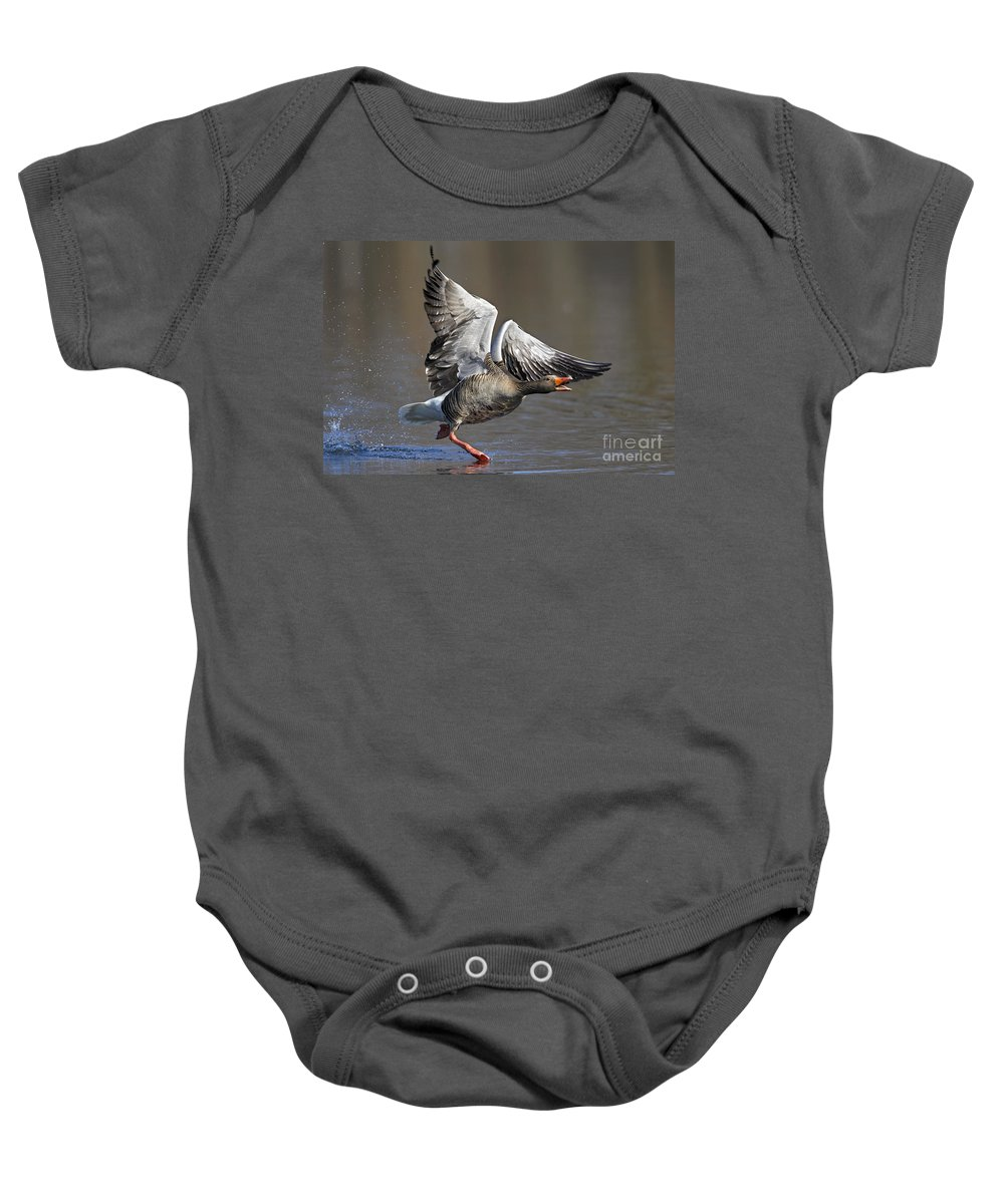 Greylag Goose Baby Onesie featuring the photograph 120223p130 by Arterra Picture Library