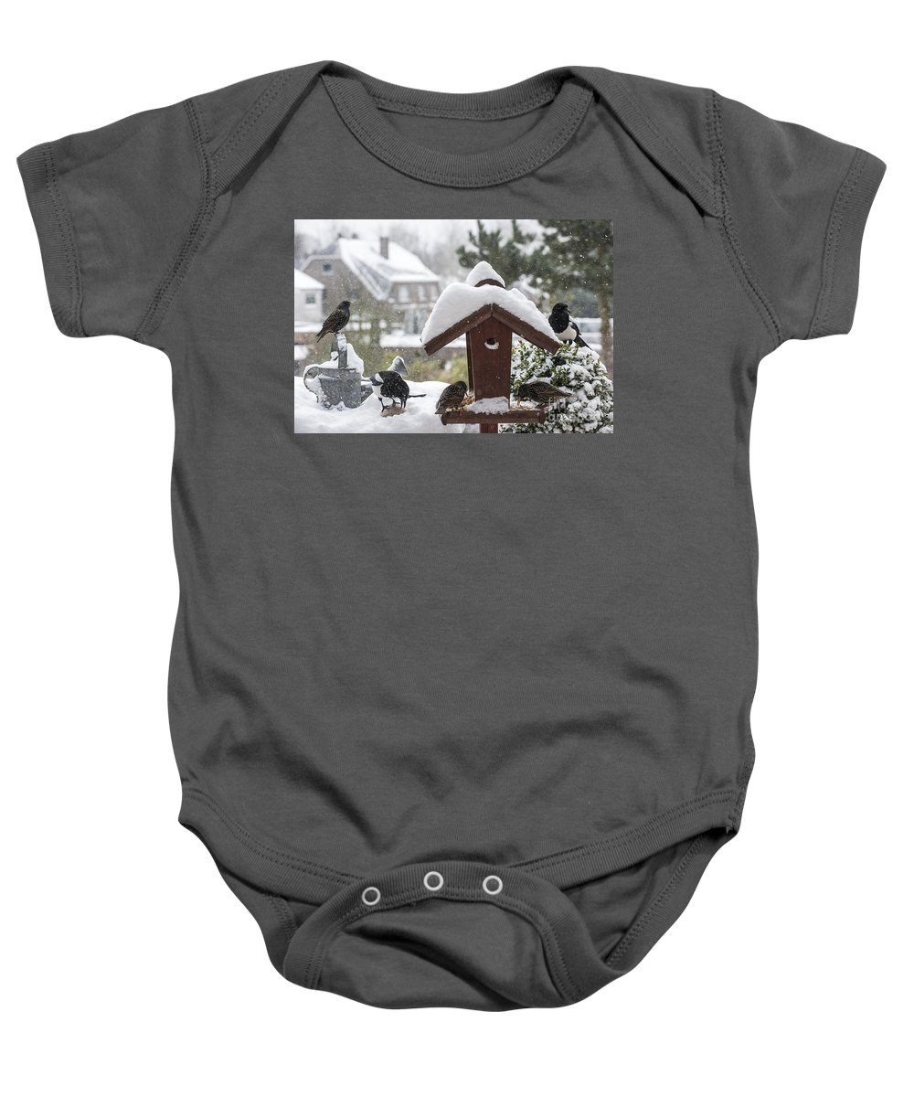 Common Starling Baby Onesie featuring the photograph 130215p304 by Arterra Picture Library
