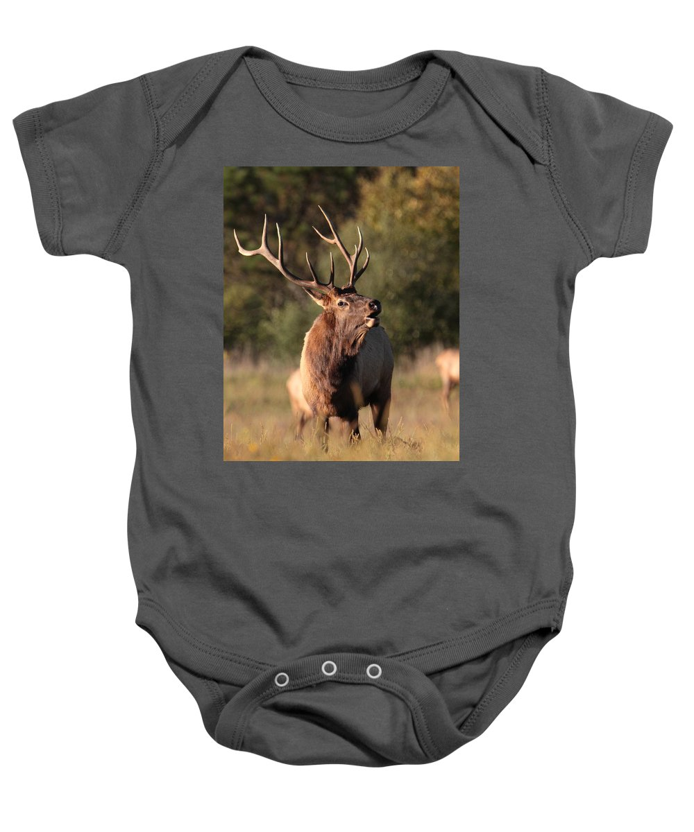 Elk Baby Onesie featuring the photograph Bugling Bull Elk by Bruce J Robinson