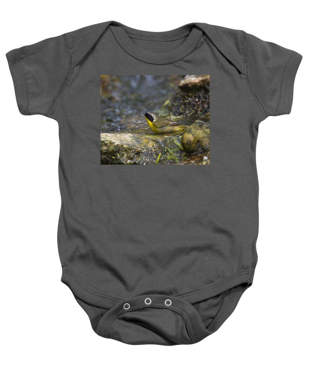 Doug Lloyd Baby Onesie featuring the photograph Common Yellowthroat by Doug Lloyd