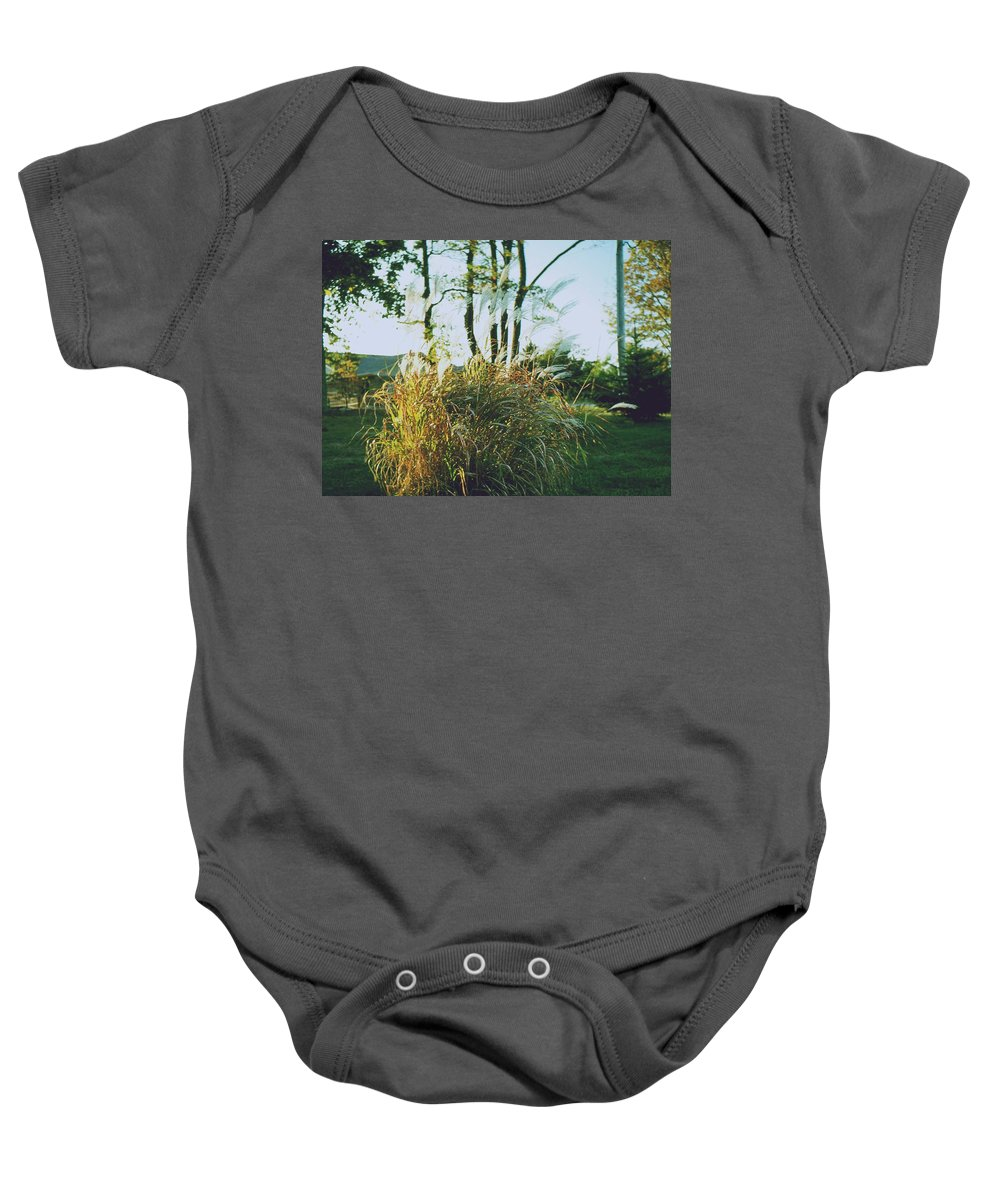 Plants Baby Onesie featuring the photograph Fall Colors by Gary Wonning