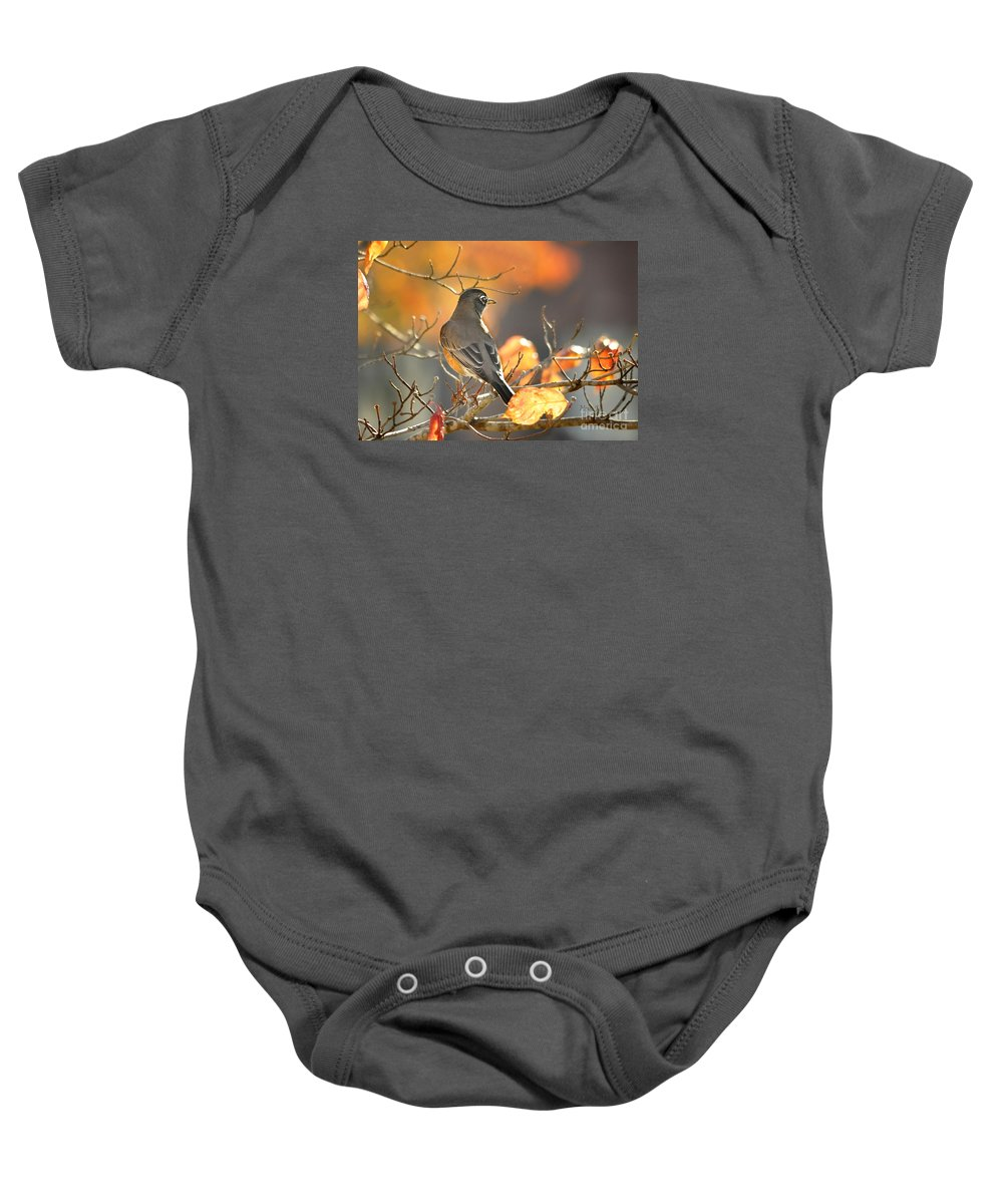 Nature Baby Onesie featuring the photograph Glowing Robin by Nava Thompson