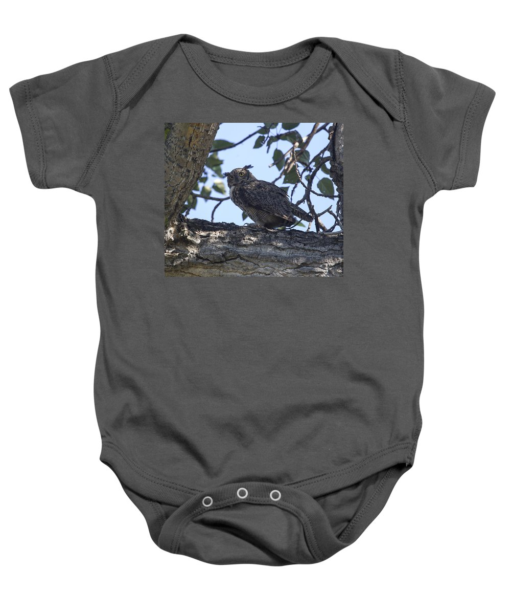 Doug Lloyd Baby Onesie featuring the photograph Great Horned Owl by Doug Lloyd