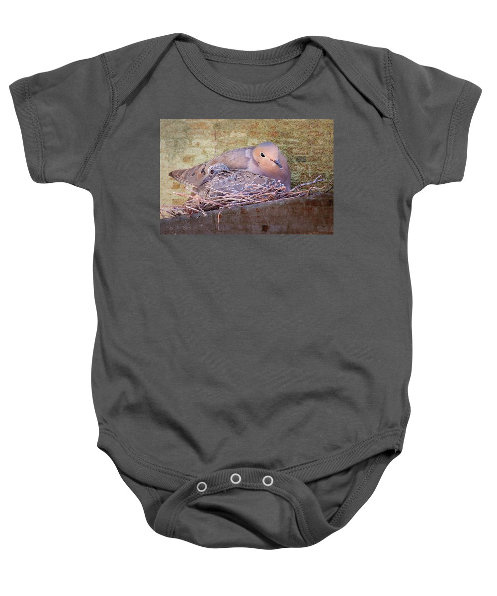 Birds Baby Onesie featuring the photograph Small Family by Jim Thompson