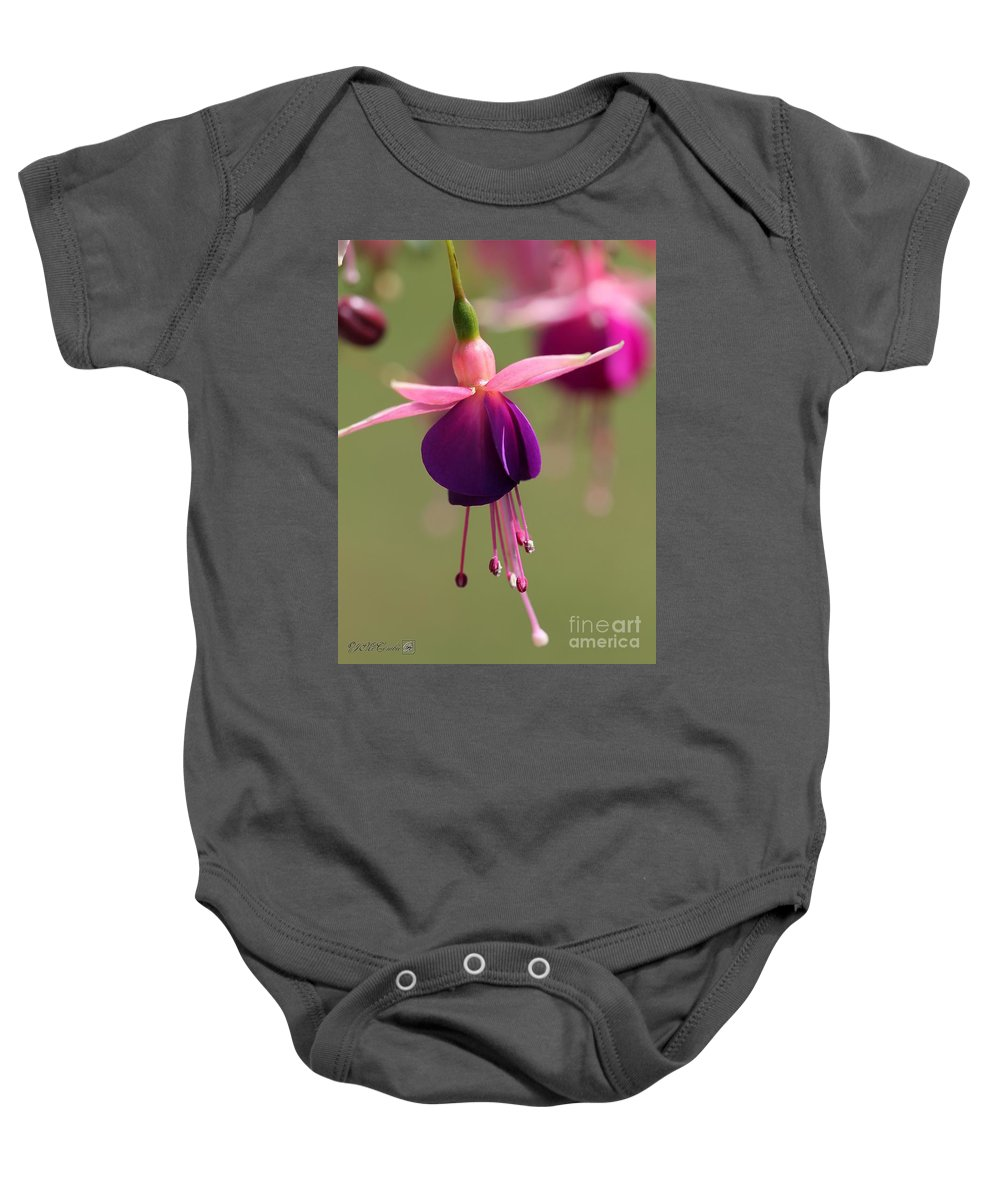 Mccombie Baby Onesie featuring the photograph Fuchsia Named Lambada by J McCombie