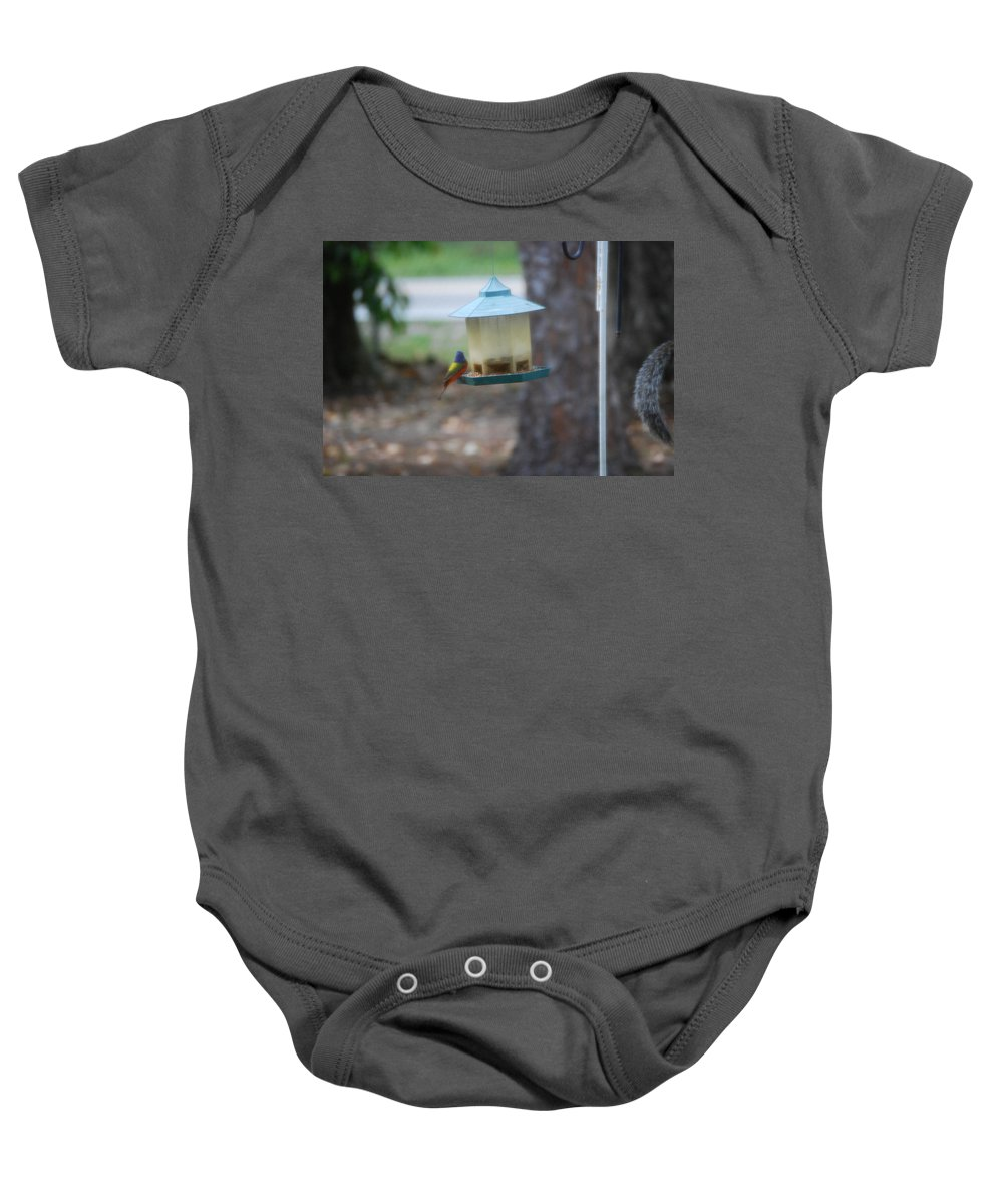 Chow Time At The Bird Feeder. Baby Onesie featuring the photograph Painted Bunting by Robert Floyd