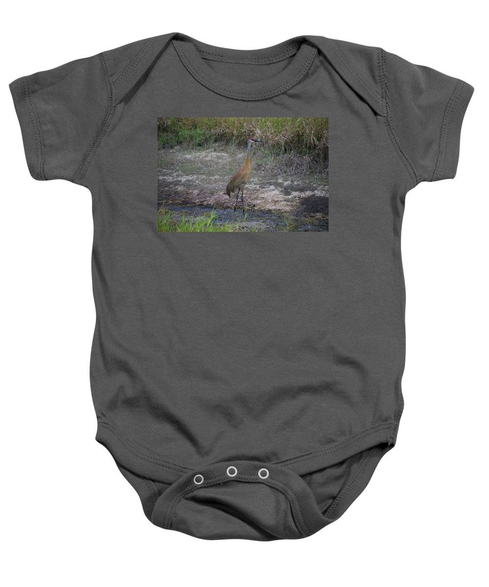 On Guard Baby Onesie featuring the photograph Sandhill Crane by Robert Floyd