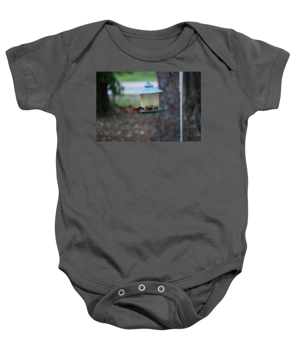 Eating At Bird Feeder Baby Onesie featuring the photograph Painted Bunting by Robert Floyd