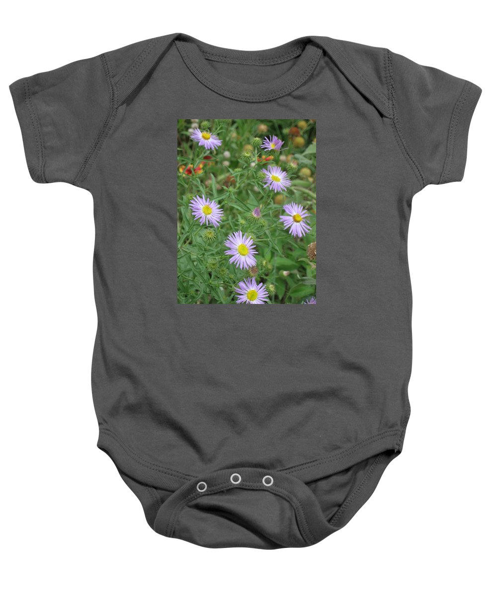Asters Baby Onesie featuring the photograph 6 Asters Left by Ron Monsour