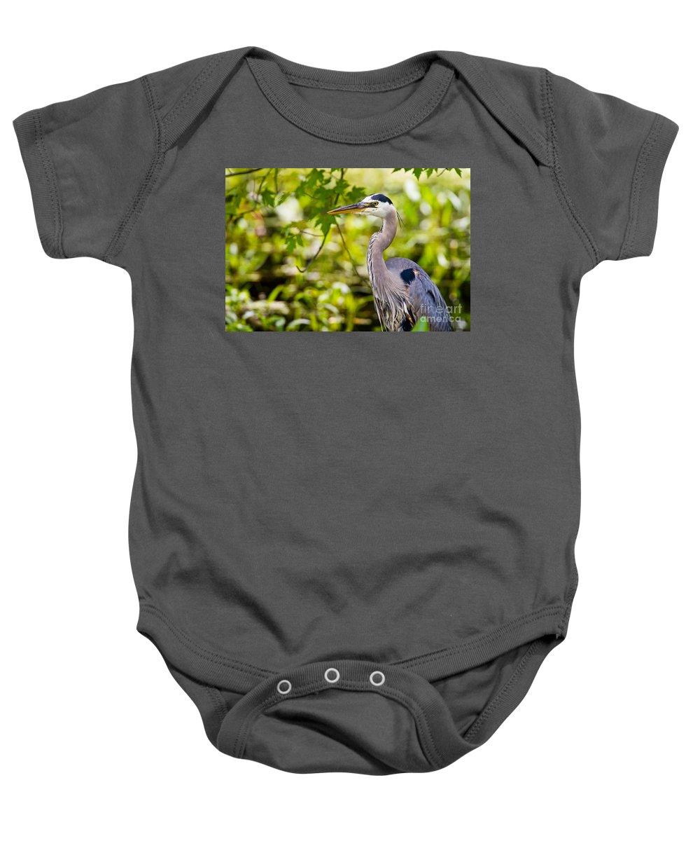 Michael Cummings Baby Onesie featuring the photograph Blue Heron by Michael Cummings