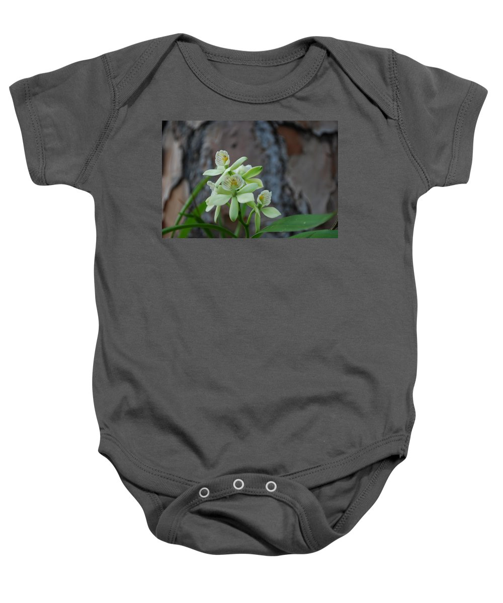 On Tree In My Yard Baby Onesie featuring the photograph Orchid by Robert Floyd