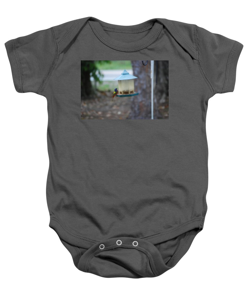 Visiting The Bird Feeder. Baby Onesie featuring the photograph Painted Bunting by Robert Floyd