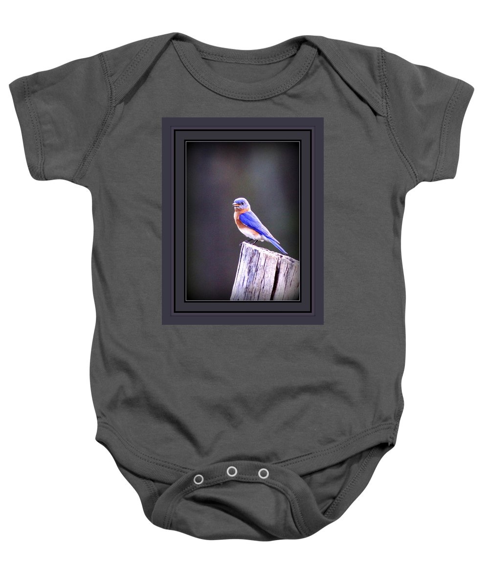 8415-002 Baby Onesie featuring the photograph 8415-002 by Travis Truelove