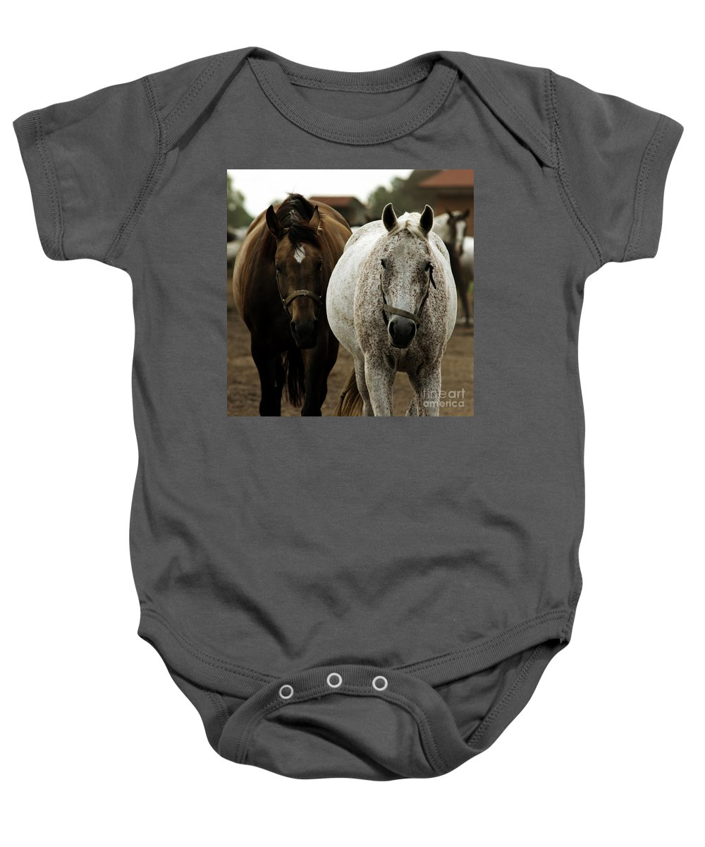 Horse Baby Onesie featuring the photograph Horses by Angel Ciesniarska