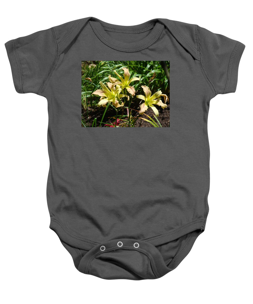 Daylily Baby Onesie featuring the photograph A Blush of Summer by Jean Blackmer