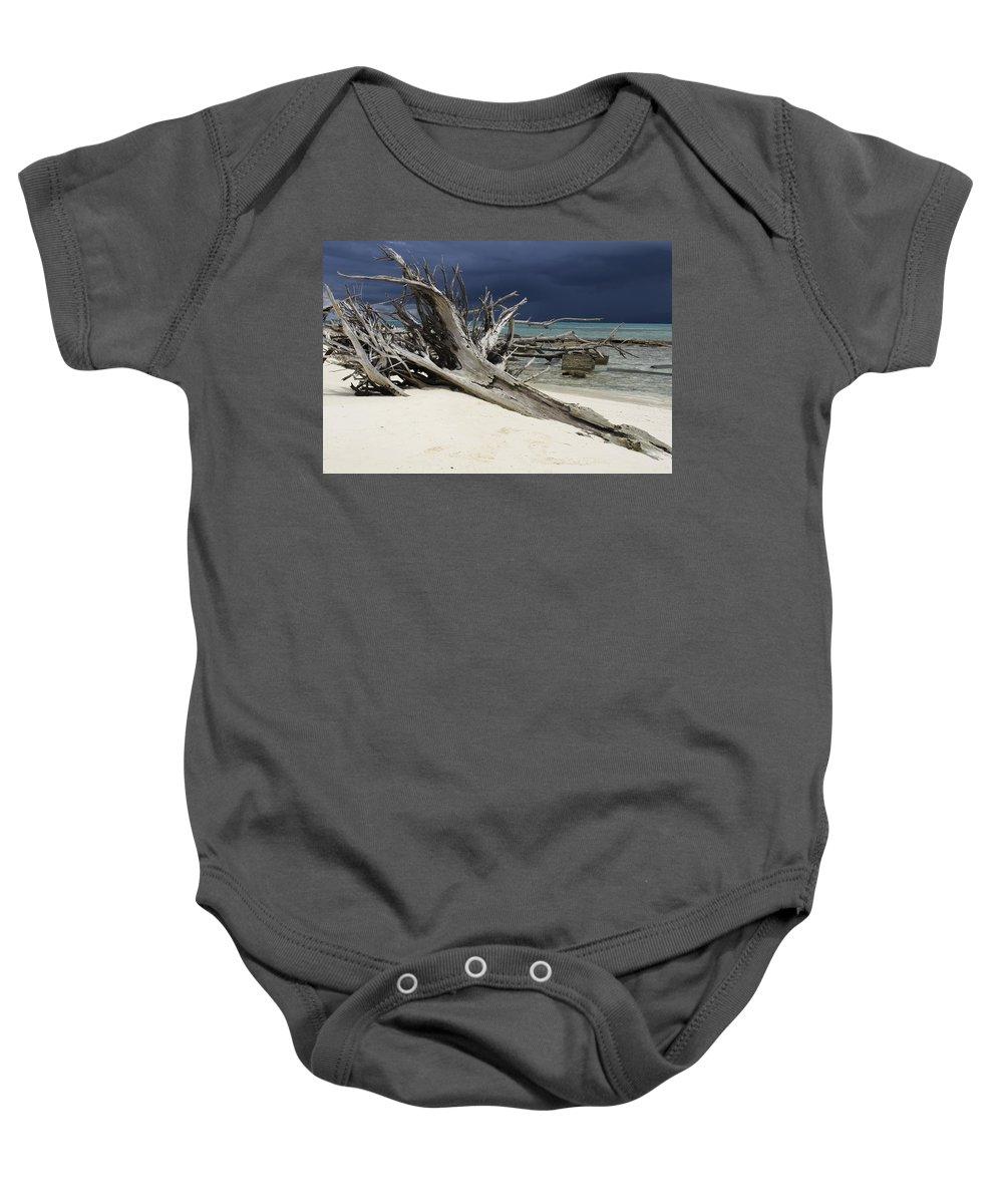 Mark J Dunn Baby Onesie featuring the photograph A Drift by Mark J Dunn