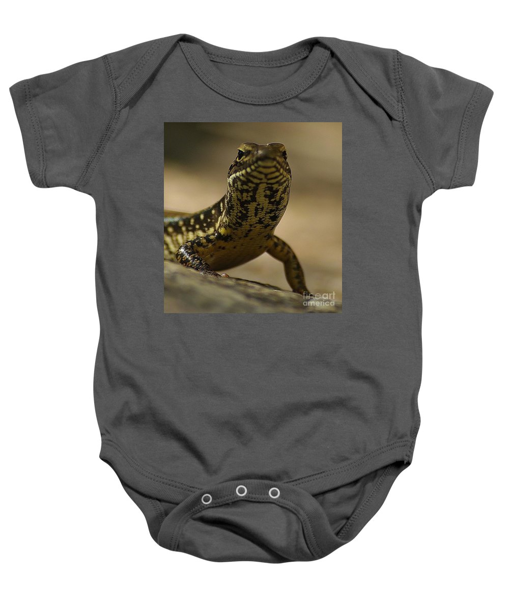 Golden Skink Baby Onesie featuring the photograph A Golden Skink by Blair Stuart