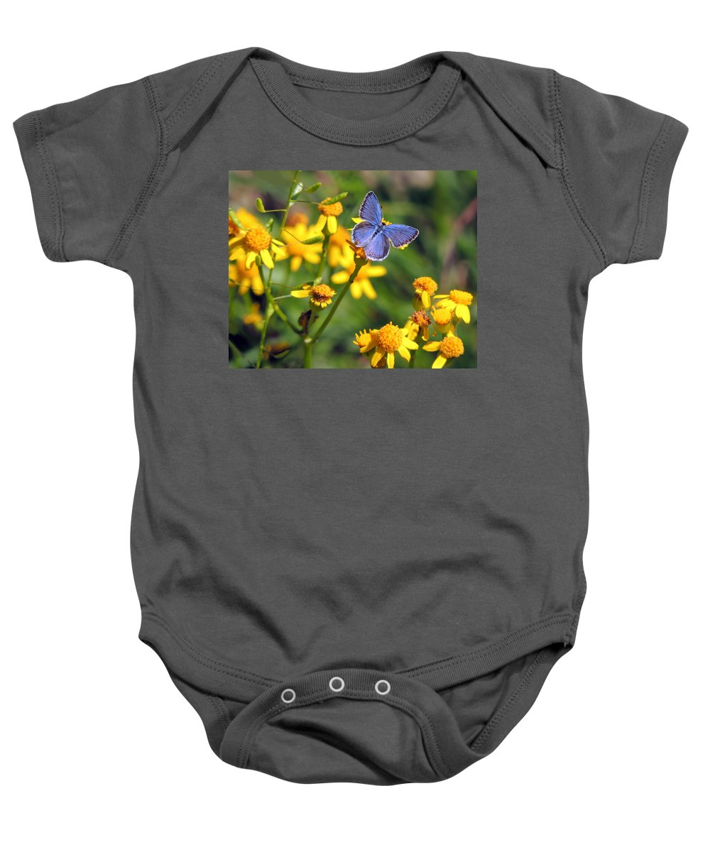 Butterfly Baby Onesie featuring the photograph A Little Blue by Linda Shannon Morgan
