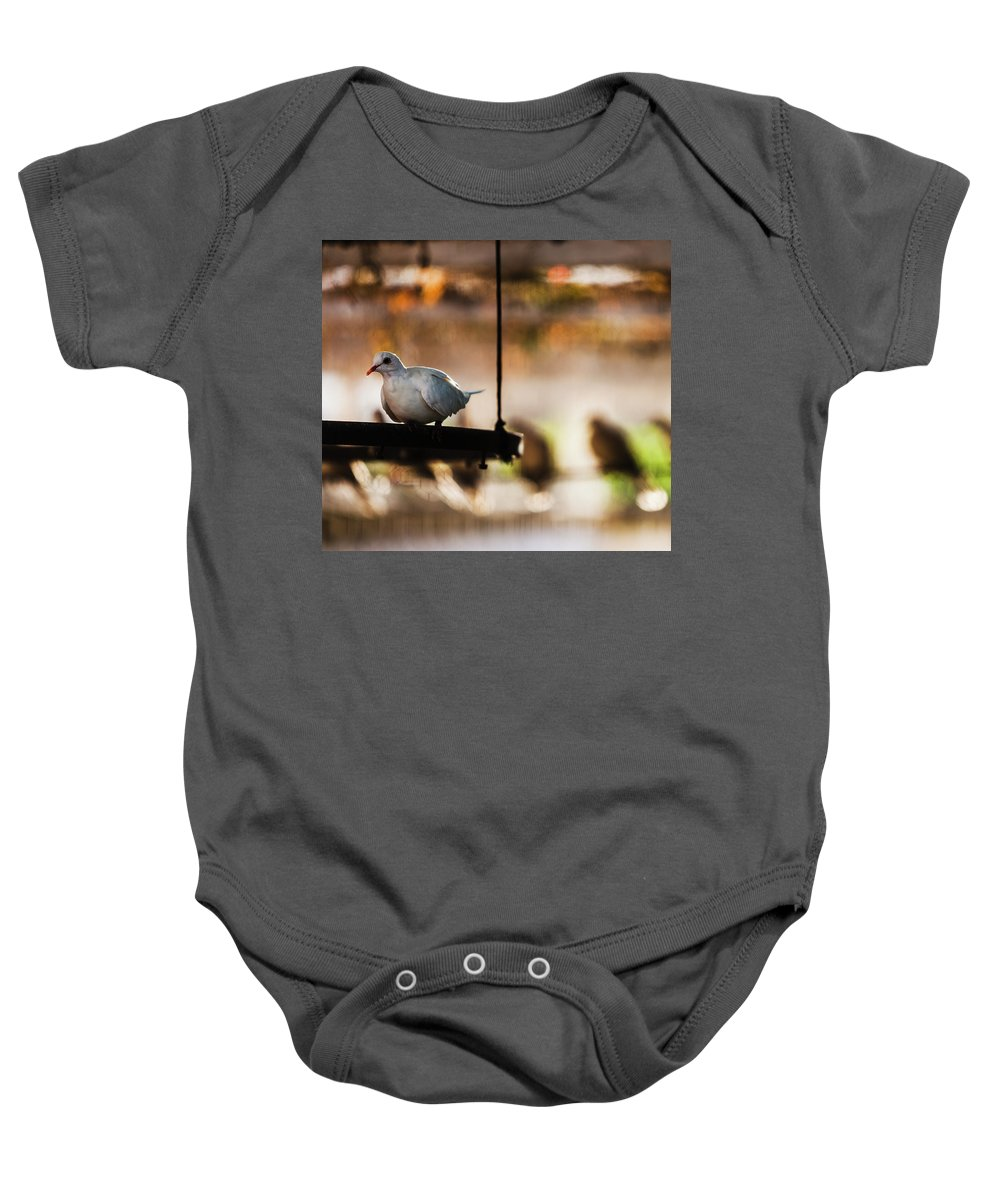 Animal Baby Onesie featuring the photograph A Pigeon In A Cage by Ron Koeberer