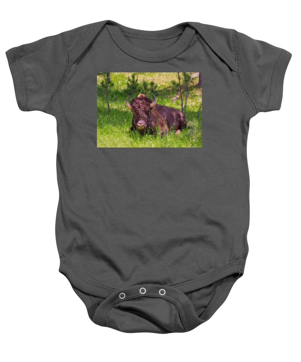 Landscape Baby Onesie featuring the photograph A Resting Bison by John M Bailey