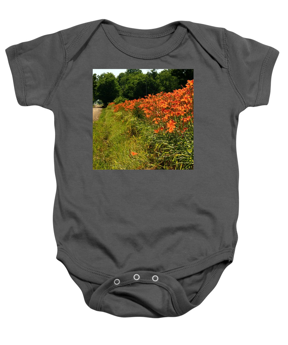Roadside Baby Onesie featuring the photograph Adamsville Lilies 1 by Jim Cotton