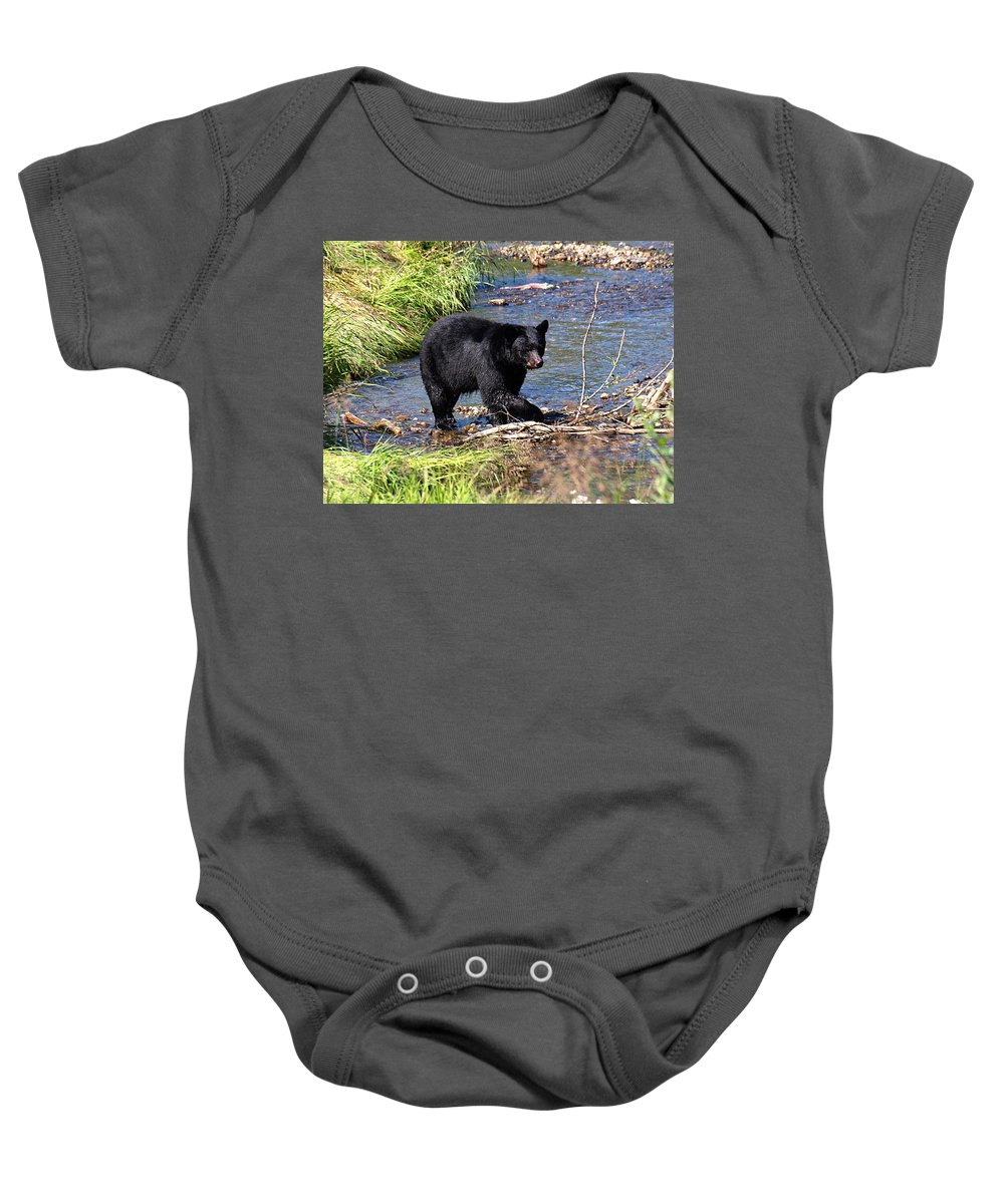 Bear Baby Onesie featuring the photograph Alaskan Black Bear Hunting In A River by Jessica Foster