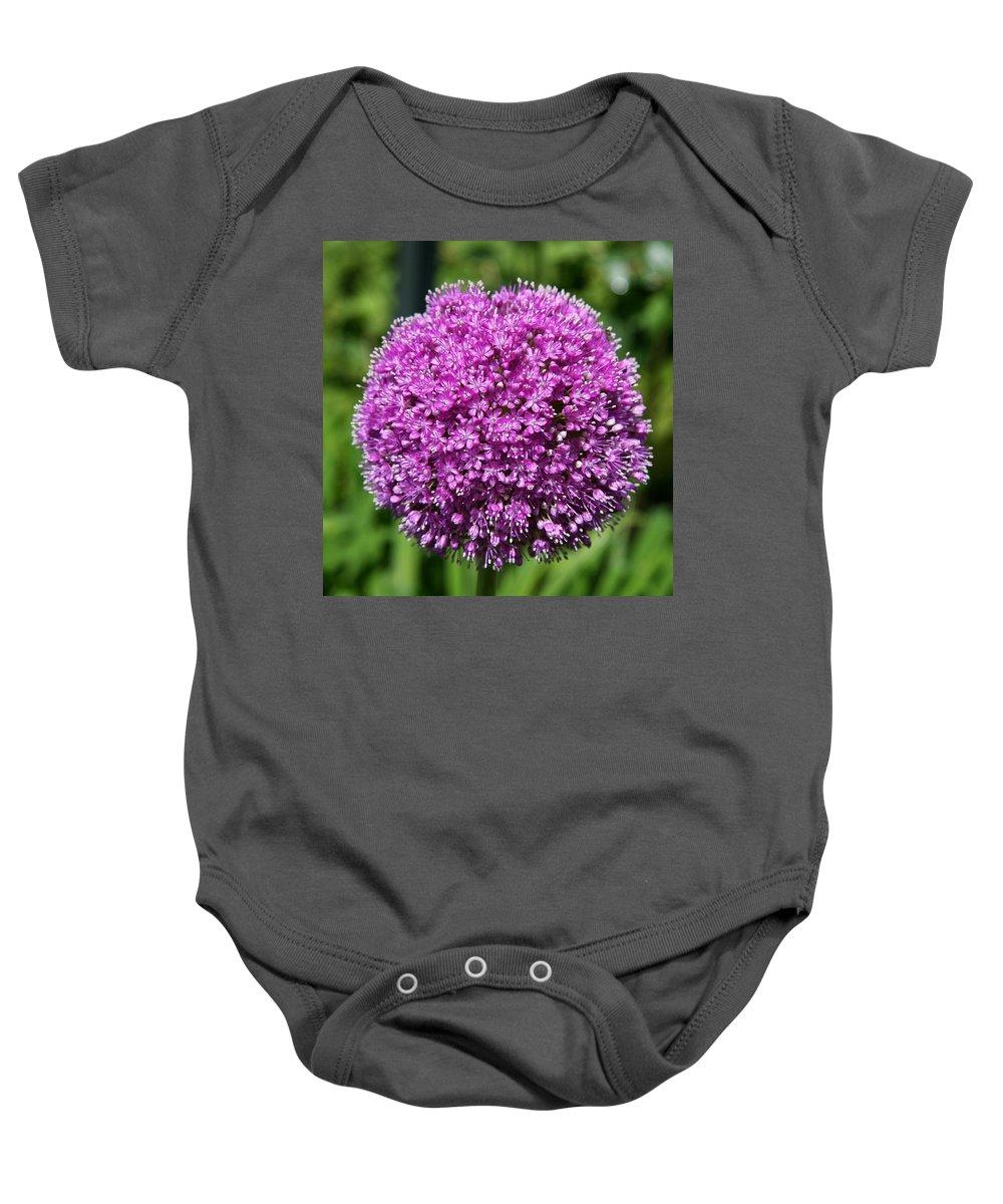 Allium Baby Onesie featuring the photograph Allium Globe by Christiane Schulze Art And Photography