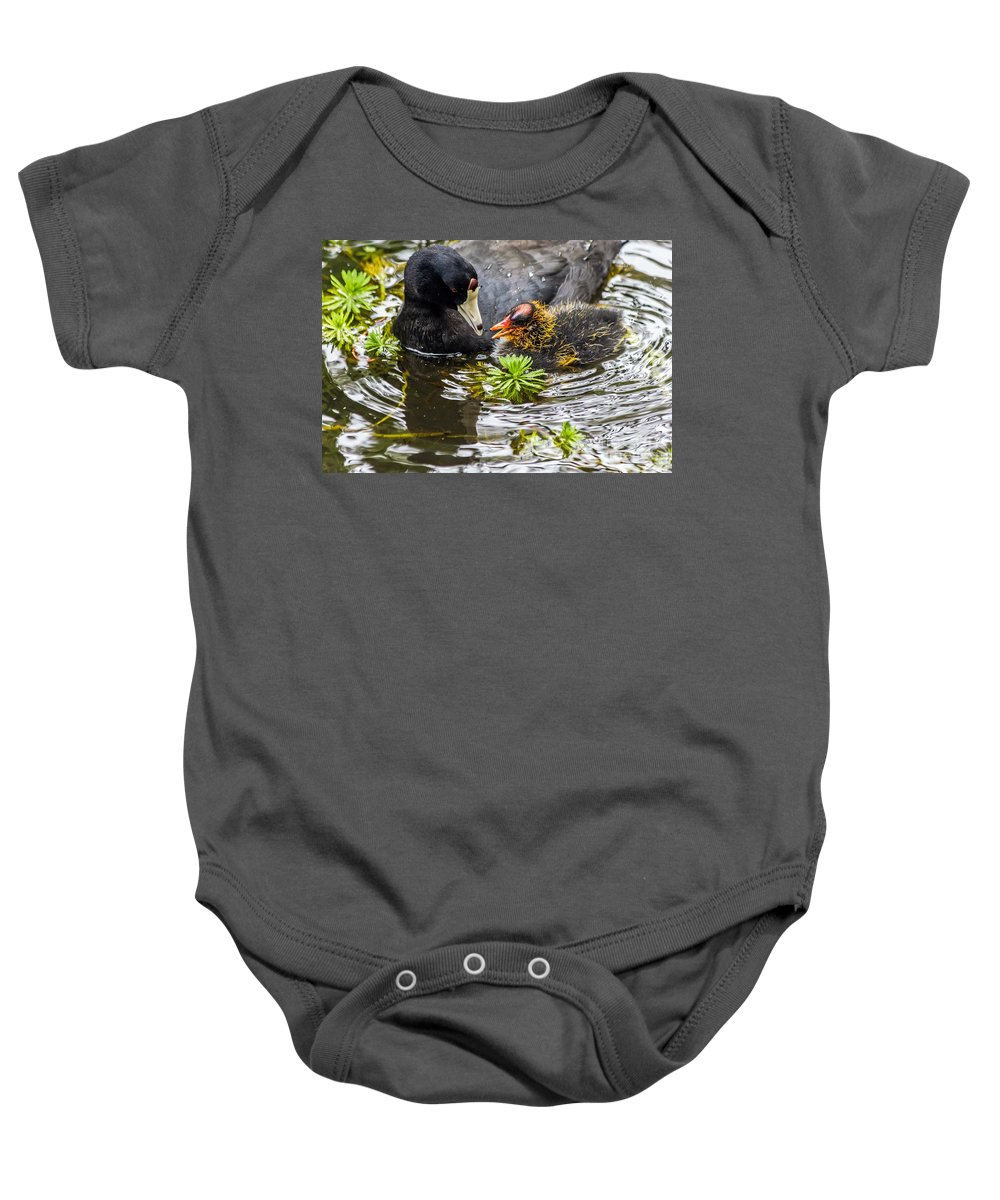 American Coot Baby Onesie featuring the photograph American Coot And Chick by Kate Brown