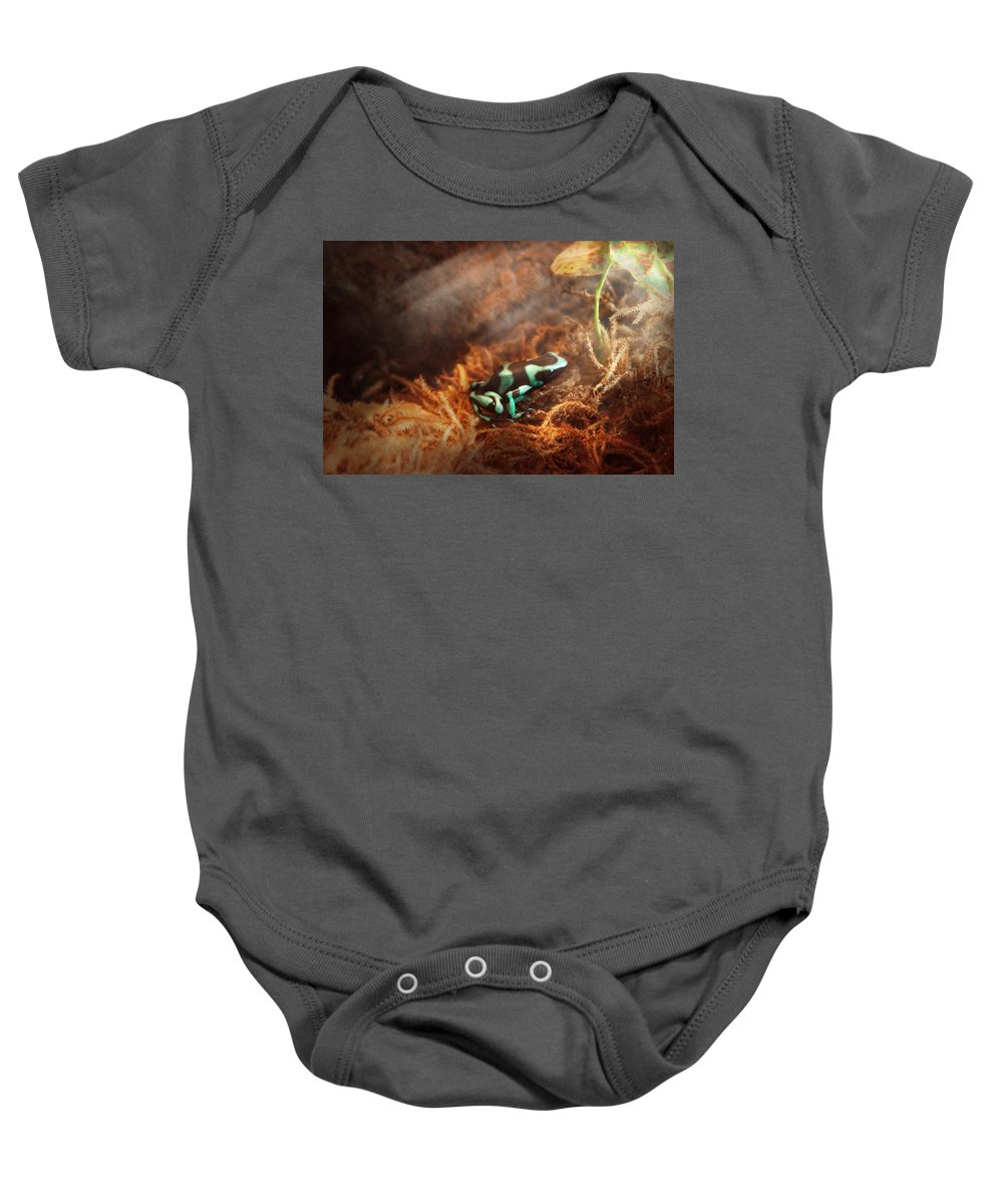 Savad Baby Onesie featuring the photograph Animal - Frog - Lick The Green Frog by Mike Savad