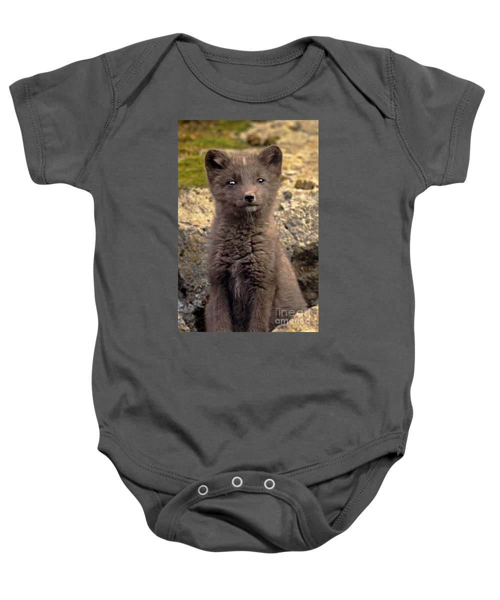 North America Baby Onesie featuring the photograph Arctic Fox Pup Alaska Wildlife by Dave Welling