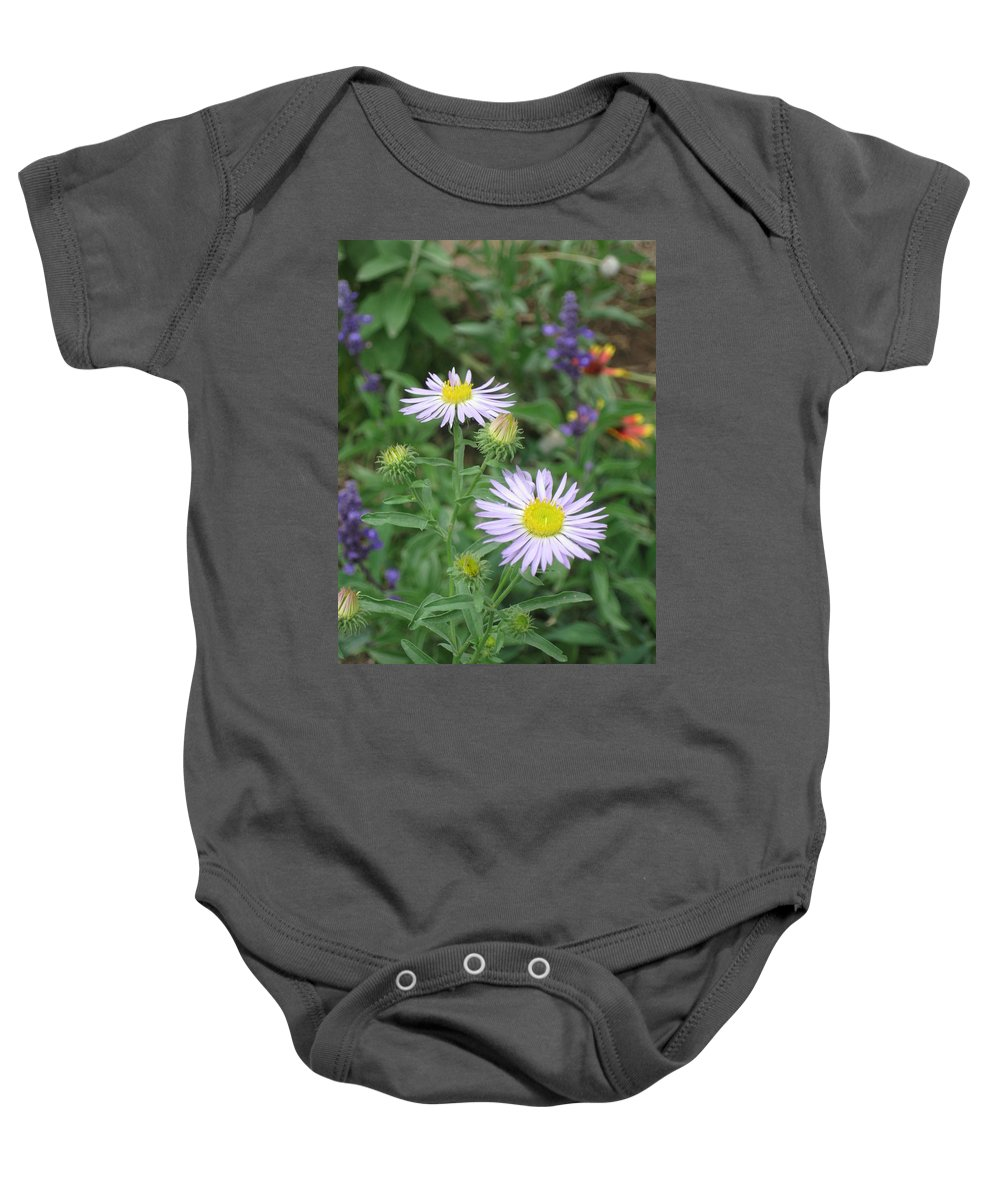 Asters Baby Onesie featuring the photograph Asters In Close-up by Ron Monsour