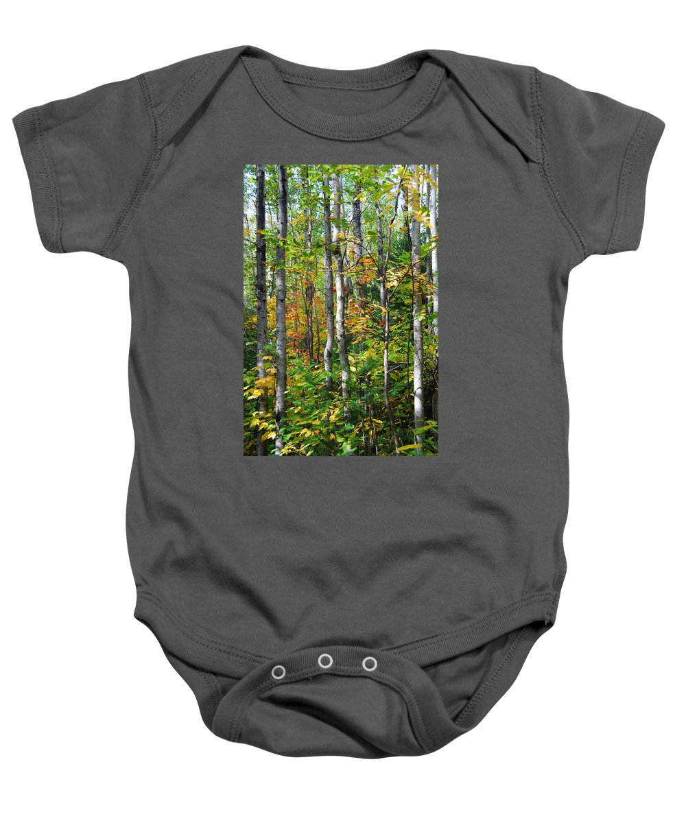 Landscape Baby Onesie featuring the photograph Autumn Forest Detail by Cascade Colors