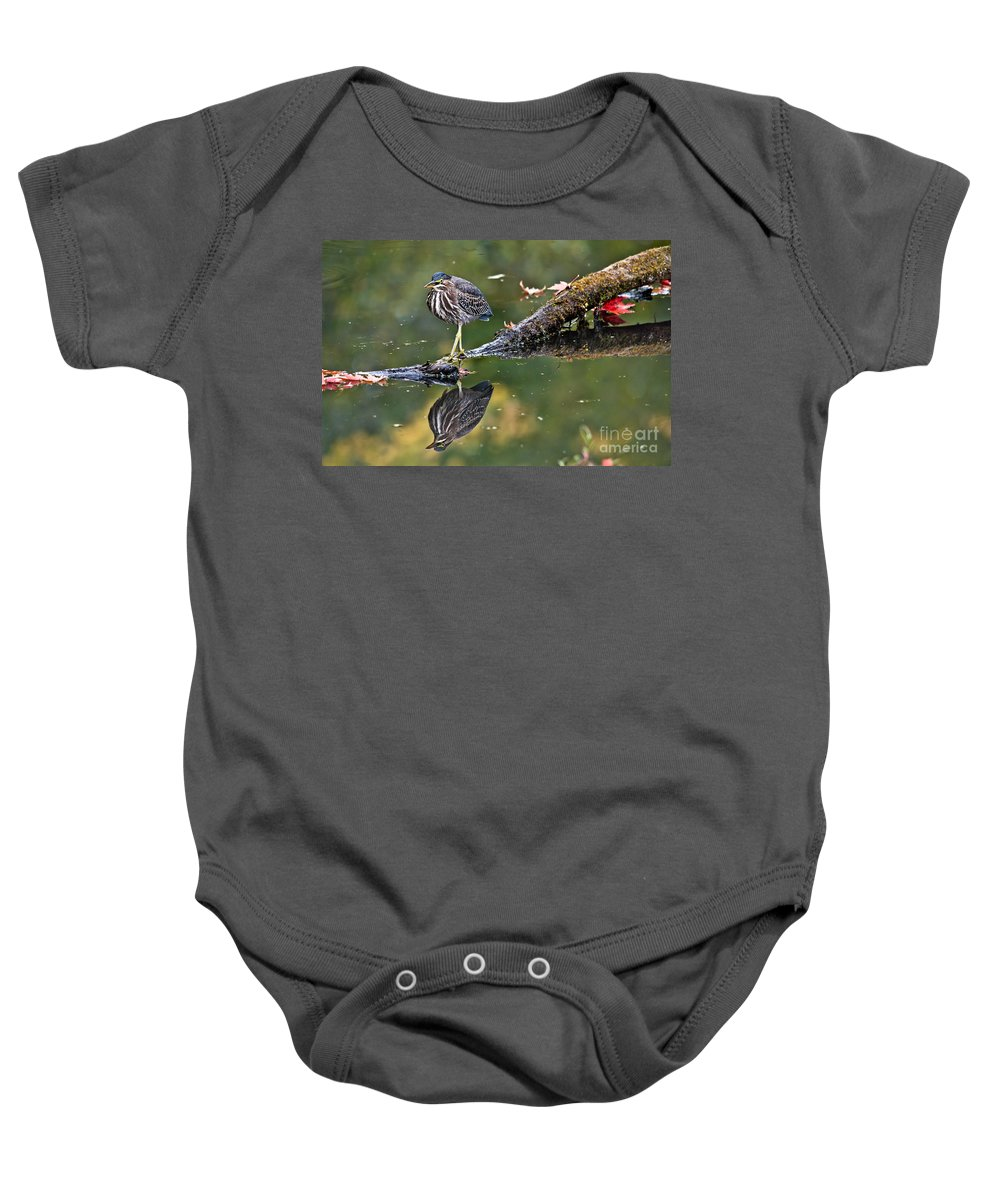 Green Heron Baby Onesie featuring the photograph Autumn Green by Cheryl Baxter