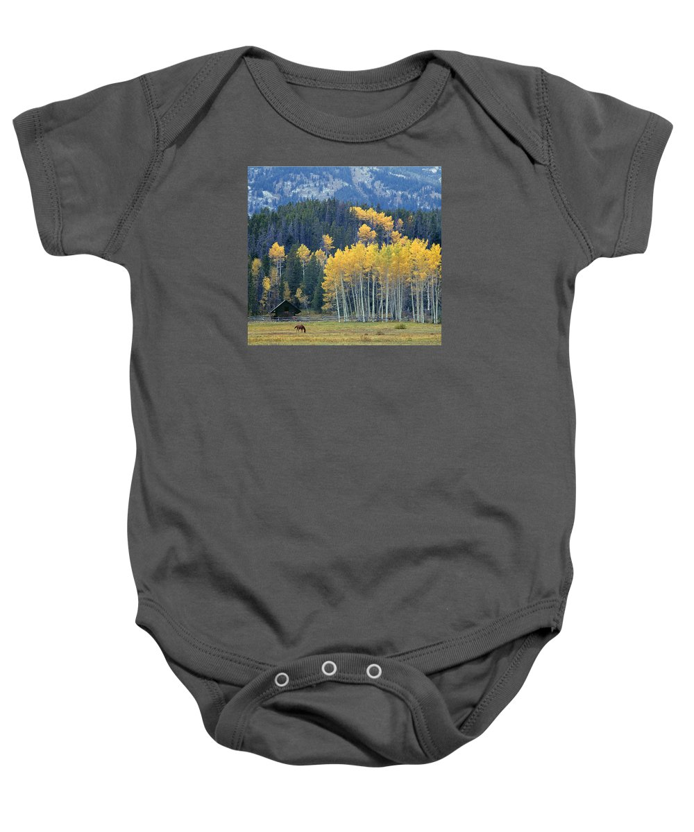 Jackson Hole Baby Onesie featuring the photograph 1m9359-autumn In Jackson Hole Ranch Country by Ed Cooper Photography