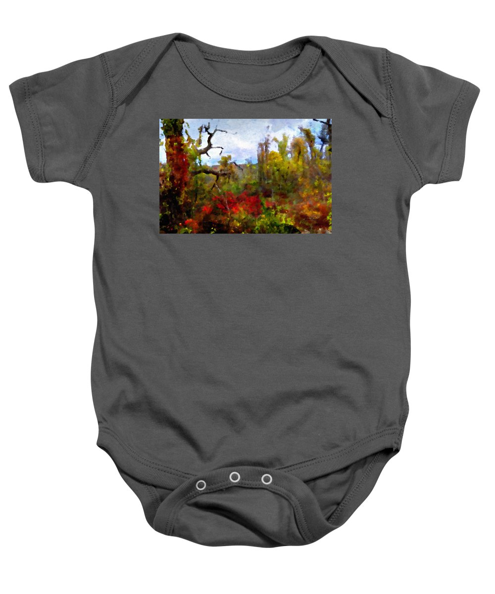 Horizon Image Baby Onesie featuring the photograph Autumn In New England by Joan Reese