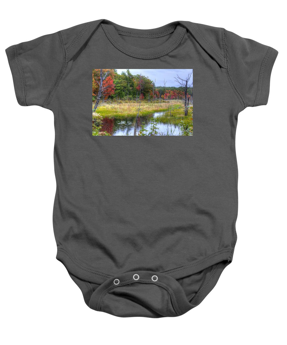 Autumn Baby Onesie featuring the photograph Autumn Marsh by Donna Doherty