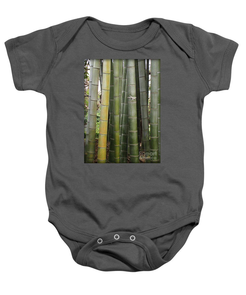 Bamboo Baby Onesie featuring the photograph Bamboo by Eena Bo